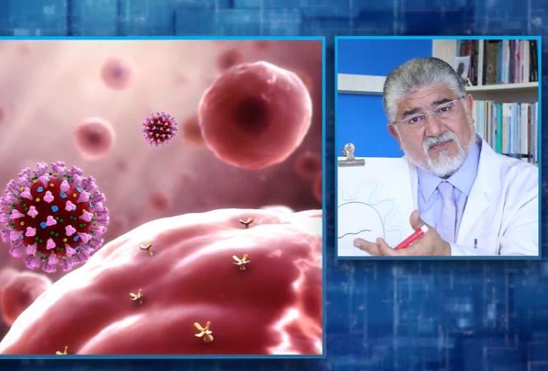 Korona virüs nedir? Covid 19 nedir?